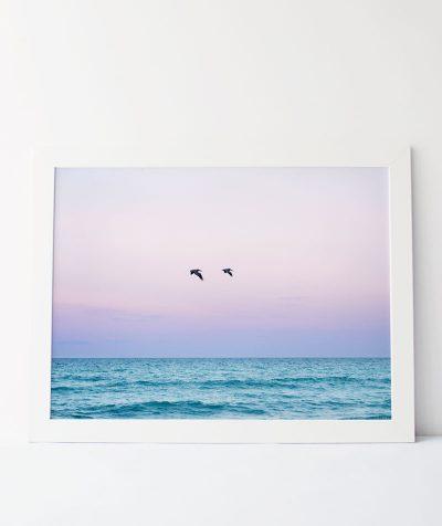 Across Oceans Photograph