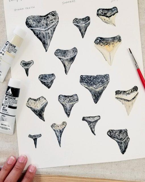 Artist's hand next to her shark teeth illustrations